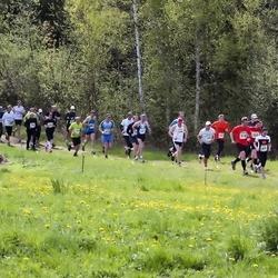SEB 30. Tartu Jooksumaraton - Meelis Kasela (516), Anneli Valge (691), Raimo Raat (700), Kaimar Siidra (2121)