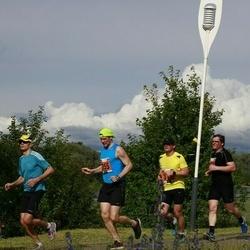 Pärnumaa Võidupüha maraton - Urmas Tuvikene (355)