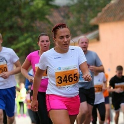 SEB Tallinna Maraton - Anneliis Peitel (3465)