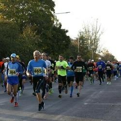 42. Saaremaa Kolme Päeva Jooks - Innar Sepp (364), Ago Kokk (465)