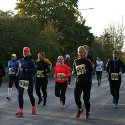42. Saaremaa Kolme Päeva Jooks - Triin Tammiku (338), Lauri Saidla (430), Kati Arro (515), Hedi Käär (555)