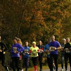 42. Saaremaa Kolme Päeva Jooks - Age Jakobson (265), Tormi Leinart (353), Liina Kadari (577)