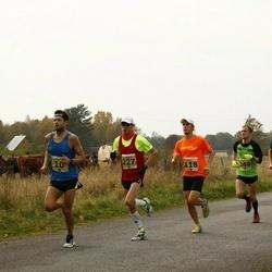 42. Saaremaa Kolme Päeva Jooks - Marek Nõmm (10), Ago Veilberg (14), Silver Mikk (118), Margus Pirksaar (227), Cris Poll (249), Oliver Mändla (464), Kalev Õisnurm (524)