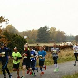 42. Saaremaa Kolme Päeva Jooks - Brait Õispuu (174), Ott Viirmann (245), Priit Kald (382), Tiit Arus (431)