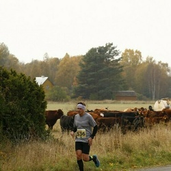 42. Saaremaa Kolme Päeva Jooks - Gatis Madzins (536)