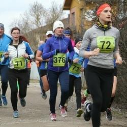 5. Tartu Parkmetsa jooks - Ulvi Lond (71), Monika Teder (72), Erge Viiklaid (376)