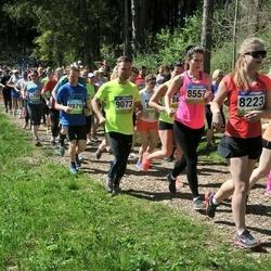 34. Tartu Jooksumaraton - Kerli Pajumaa (8557), Vallo Padari (8979), Andre Markus Hansaar (9072)