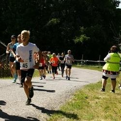 Hiiumaa VI jooksumaraton - Jan Kõrva (29), Toomas Mast (29), Mihkel Heinapuu (29), Leisberg Martin (29), Targo Tennisberg (29), Helina Täht (32), Arto Alaspää (32), Vask Hanna (32), Annika Pang (32), Siiri Talts (45), Sven Aigar Tammeveski (45), Laanbek Eha (45), Siim Leisalu (45)