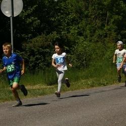 Hiiumaa VI jooksumaraton - Aedmäe Janek (56)