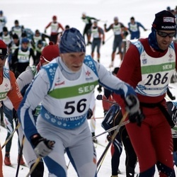 42. Tartu Maraton - Kaarel Toss (56), Anders Jakobsen (286)