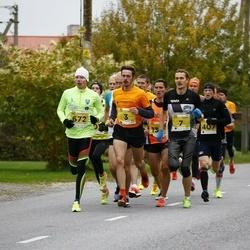 43. Saaremaa kolme päeva jooks - Argo Jõesoo (3)