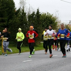 43. Saaremaa kolme päeva jooks - Tiina Mattiisen (51), Mirko Känd (488), Laidy Lainoja (539)