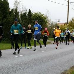 43. Saaremaa kolme päeva jooks - Herkki Leemet (939)
