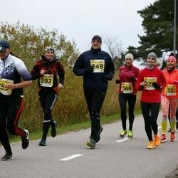 43. Saaremaa kolme päeva jooks - Laur Lõhmus (249)