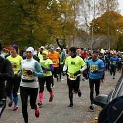 43. Saaremaa kolme päeva jooks - Anti Looskari (614)