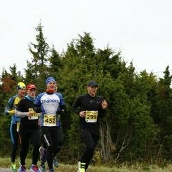43. Saaremaa kolme päeva jooks - Janek Käärd (452)