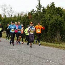 43. Saaremaa kolme päeva jooks - Leho Laja (122), Karre Lauring (210), Silja Jürs (313), Priit Lopsik (799)