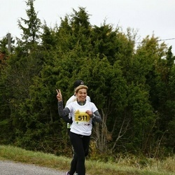 43. Saaremaa kolme päeva jooks - Eve Kitvel (511)