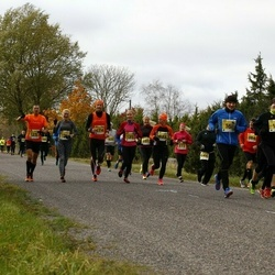 43. Saaremaa kolme päeva jooks - Raul Volke (16)