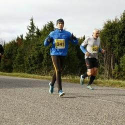 43. Saaremaa kolme päeva jooks - Meelis Mütt (341)