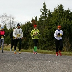 43. Saaremaa kolme päeva jooks - Mart Luhari (499)