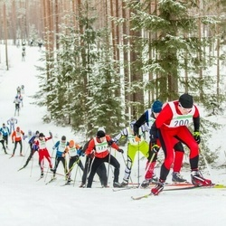 19. Alutaguse Maraton - Märt Kivila (171), Karol Keskküla (200)