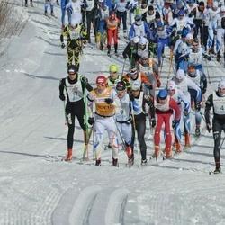 41. Haanja maraton - Andre Mets (3), Anti Saarepuu (4), Martti Himma (7), Avo Sambla (9)