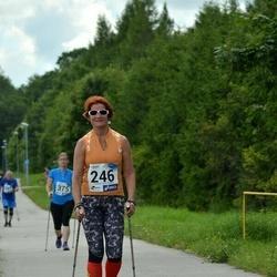 4. Suvejooks ümber Saadjärve - Anne Küüsmaa (246)