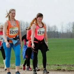 89. Suurjooks ümber Viljandi järve - Riina Hendrik (5216), Kati Agur (5272), Age Alas (5370)