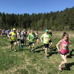 36. Tartu Maastikumaraton - Joonas Selgis (33), Toomas Härmson (8120), Chris Marcus Krahv (8273), Tiiu Müürsepp (8492), Ivo Saarniit (8697)
