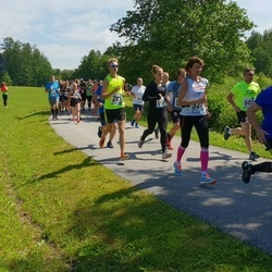 37. jooks ümber Pühajärve - Heino Lahe (167), Markkus Alter (283), Ajaots Heli (328), Martin Sõmer (602), Liina Vähi (659)