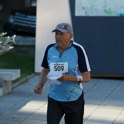 TOW 2013 - Tallinna vanalinn
