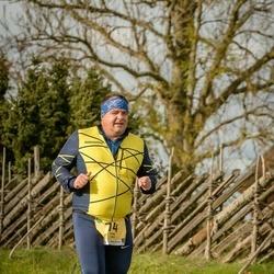 45. Saaremaa kolme päeva jooks - Tanel Saue (74)