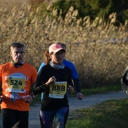 45. Saaremaa kolme päeva jooks - Kaarel Kender (524), Kristina Uibo (888)