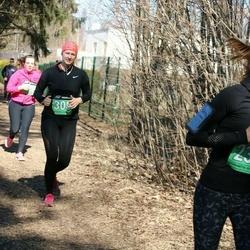 Parkmetsa jooks - Birgit Liira (237)