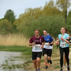 48. jooks ümber Harku järve - Sander Klaos (323)