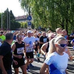 Jüri Jaansoni Kahe Silla jooks - Urmas Hallik (346), Alan Insler (442)