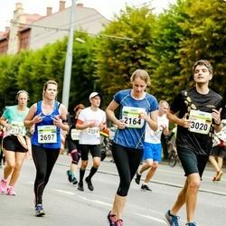 Tallinna Maraton - Olga Sambalova (2164), Anna Bilhovska (2697), Davide Restuccia (3020)