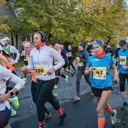 47. Saaremaa kolme päeva jooks - Kätlin Jakk (31), Inga Kree (43), Martin Palm (52), Indrek Ratas (280), Mirjam Männamaa (286), Mirek King (437)