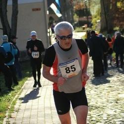 65. Viljandi Linnajooks - Toomas Ronk (85)