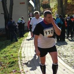 65. Viljandi Linnajooks - Rein Tamm (110)