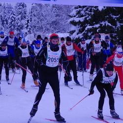 30. Viru Maraton - Yuri Kovaljov (2001), Kaarel Taimla (2055), Anna Metsger (2059)