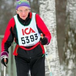 Skiing 30 km - Ann-Marie Johansson (5393)