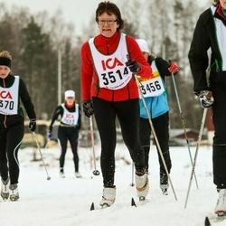 Skiing 30 km - Marita Nilsson (3514)