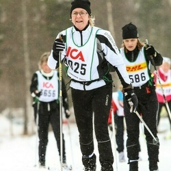 Skiing 30 km - Ing-Marie Nylander (4025)