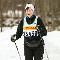 Skiing 30 km - Els-Marie Johansson (13438)