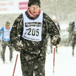 Skiing 90 km - Algot Andersson (7205)