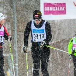 Skiing 90 km - Henric Sundström (2313)