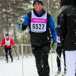 Skiing 90 km - Christer Ferm (6527)