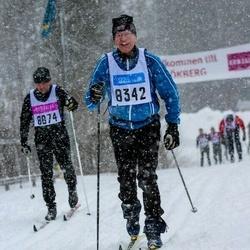 Skiing 90 km - Janne Ederström (8342)